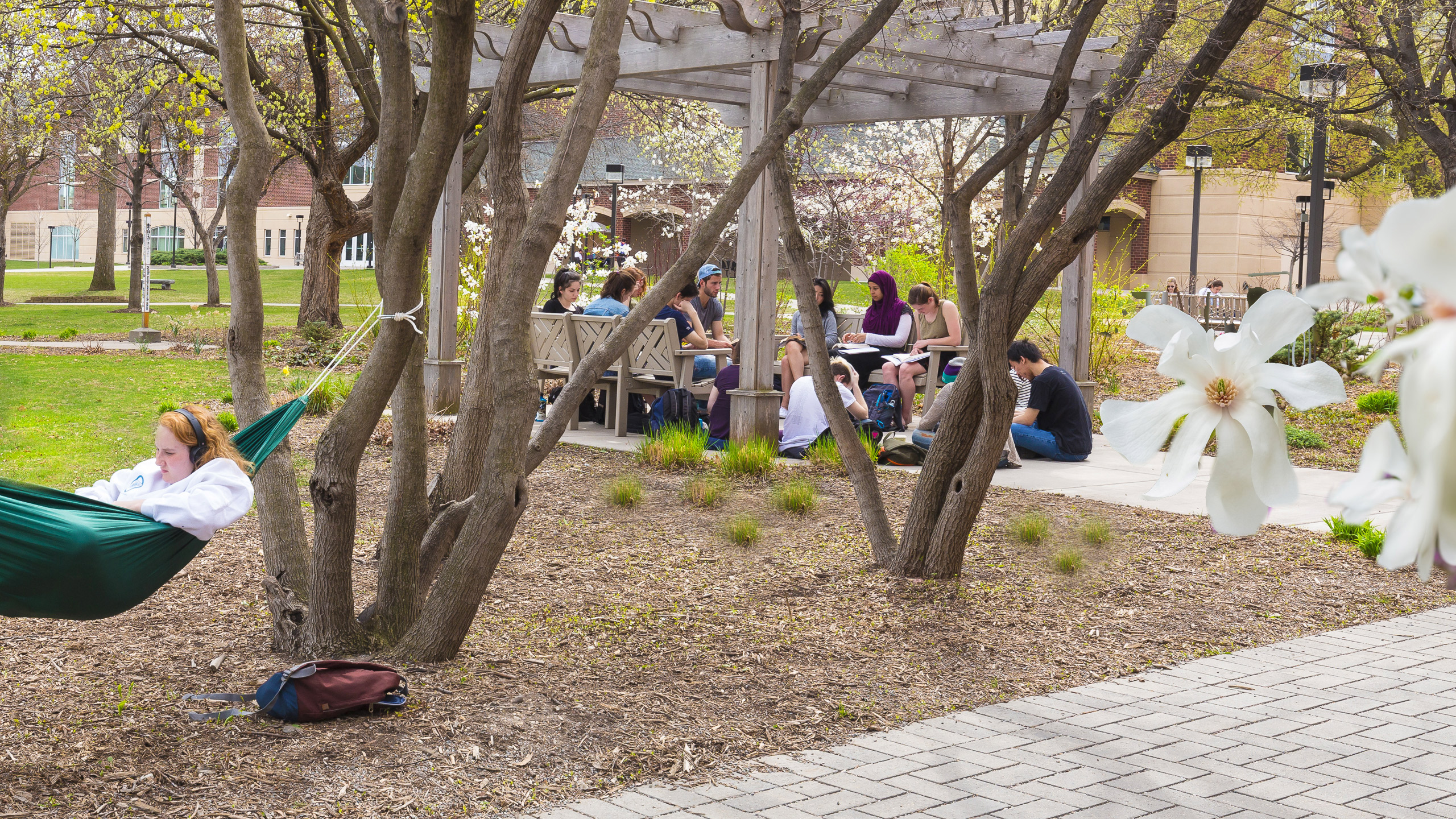 学生们 gathering on campus in springtime.